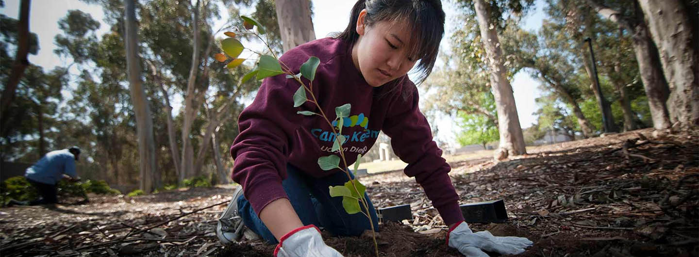UC San Diego student plants a tree while working on a community service project